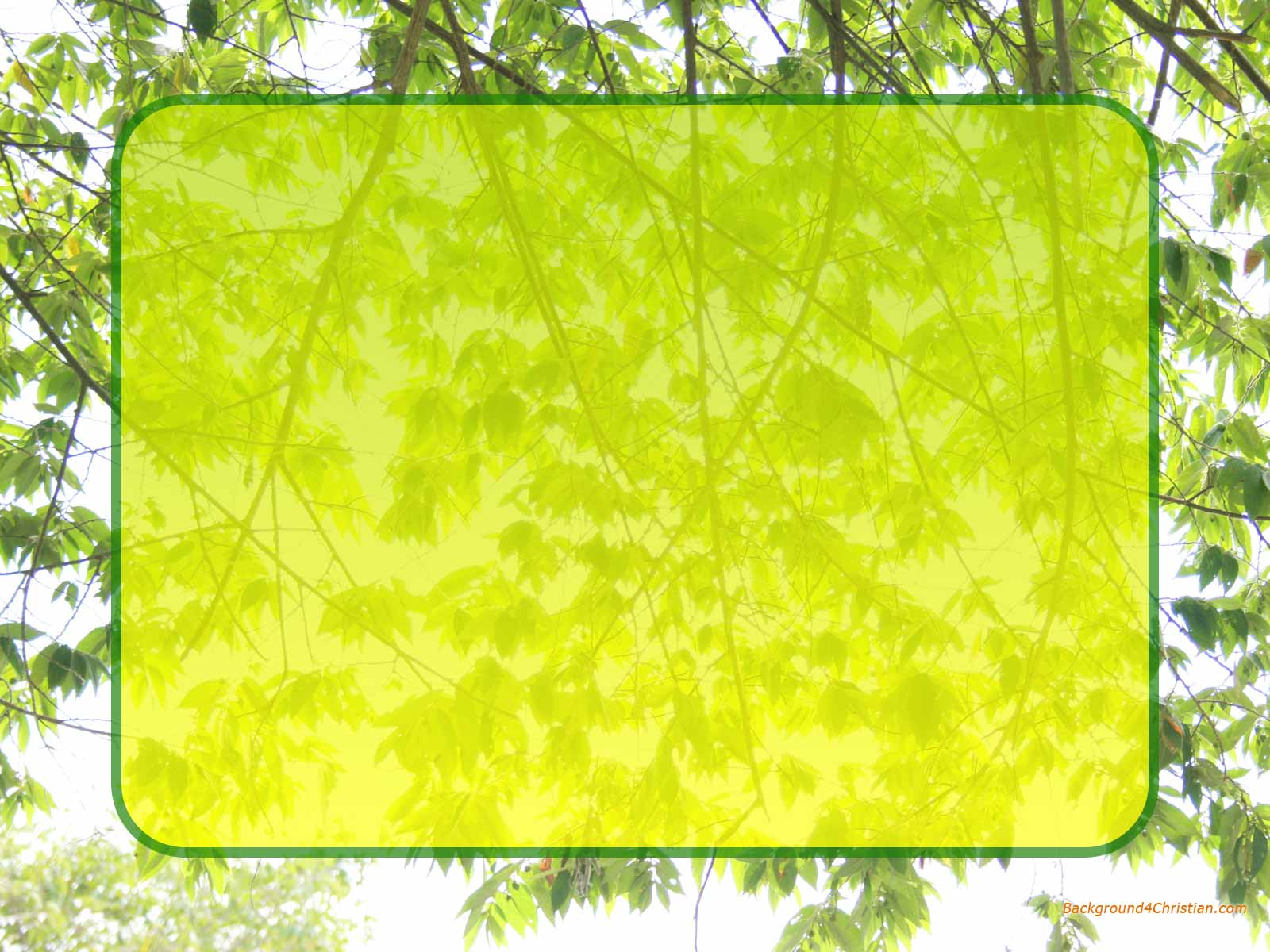 leaf tree border frame for desktop wallpaper or powerpoint backgrounds